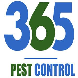 Pest Control In Melbourne