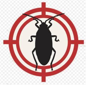 Local Pest Control Pinellas Park