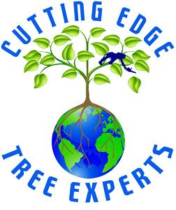 Cutting Edge Tree Experts