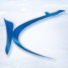 Kingsky Flight Academy
