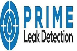 Prime leak detection