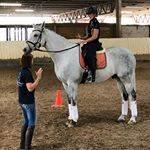 Horse Riding Lessons Brisbane