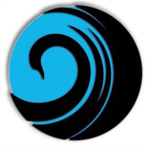 Black Swan Media Co Providence SEO Agency