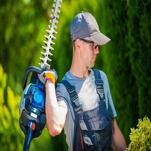Arlington Tree Service Pros