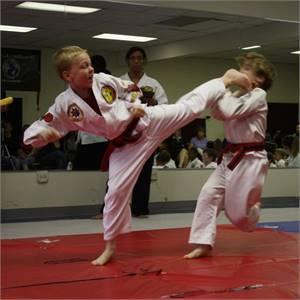 Aamerican Colleges of Jiu Jitsu and Karate