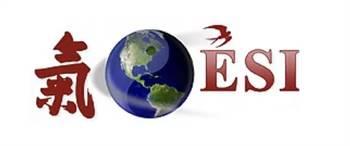 Executive Security International