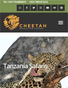 African Safari Holidays - Wildlife Safaris - Kenya Tanzania Wildebeest Migration
