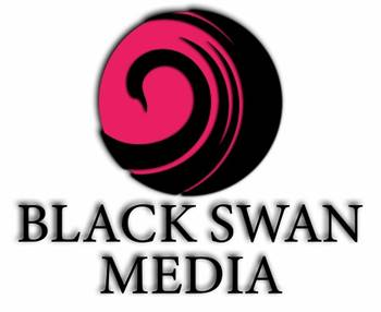 Black Swan Media Co Worcester SEO Agency