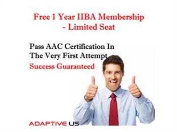 Adaptive US Inc
