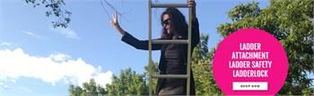 Ladder Security Lock
