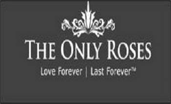 The Only Roses