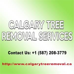 Calgary Tree Removal Services