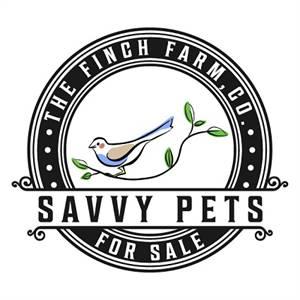 The Finch Farm - Wide Range Of Birds For Sale