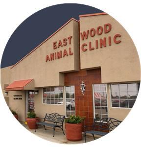 Eastwood Animal Clinic Inc