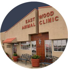 Eastwood Animal Clinic Inc