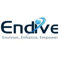 Endive Software Endive Software