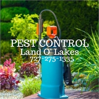 Pest Control Land O Lakes Pest Control Land O Lakes