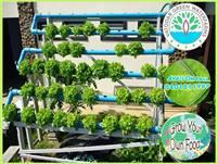 Vatodar Waterfarms